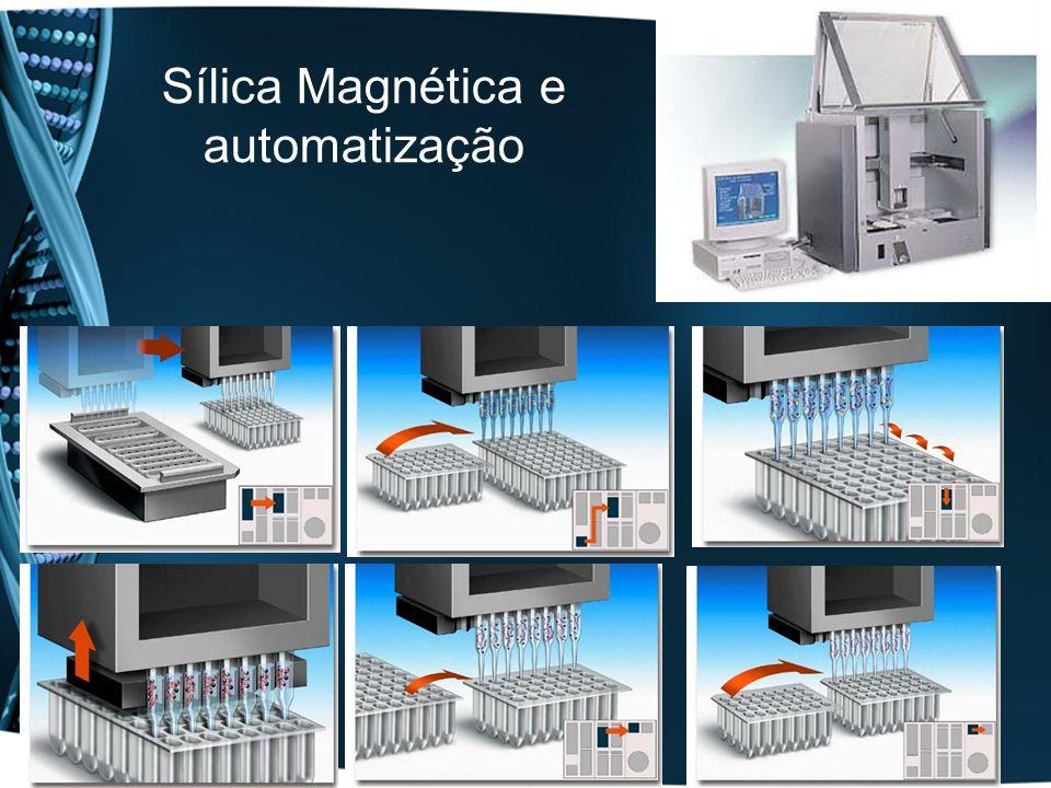 Sílica Magnética e automatização