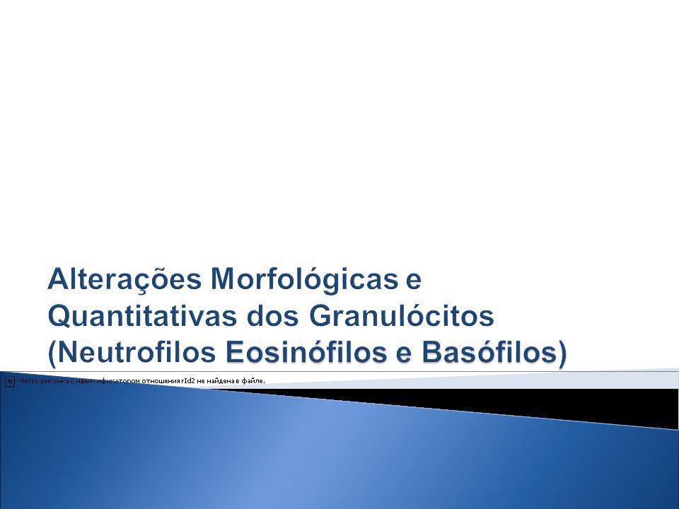 EOSINÓFILOS Granulócitos pouco numerosos Representam apenas de 2 a 4% do total de leucócitos; concentram-se na pele e mucosas.