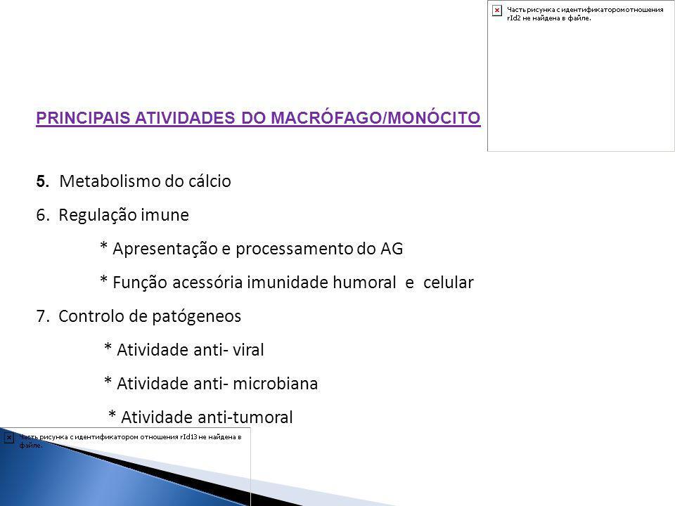 PRINCIPAIS ATIVIDADES DO MACRÓFAGO/MONÓCITO 5. Metabolismo do cálcio 6. Regulação imune * Apresentação e processamento do AG * Função acessória imunid