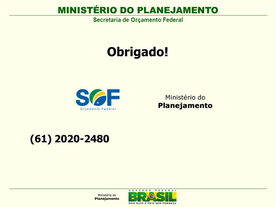 MINISTÉRIO DO PLANEJAMENTO Secretaria de Orçamento Federal (61) 2020-2480 Obrigado!
