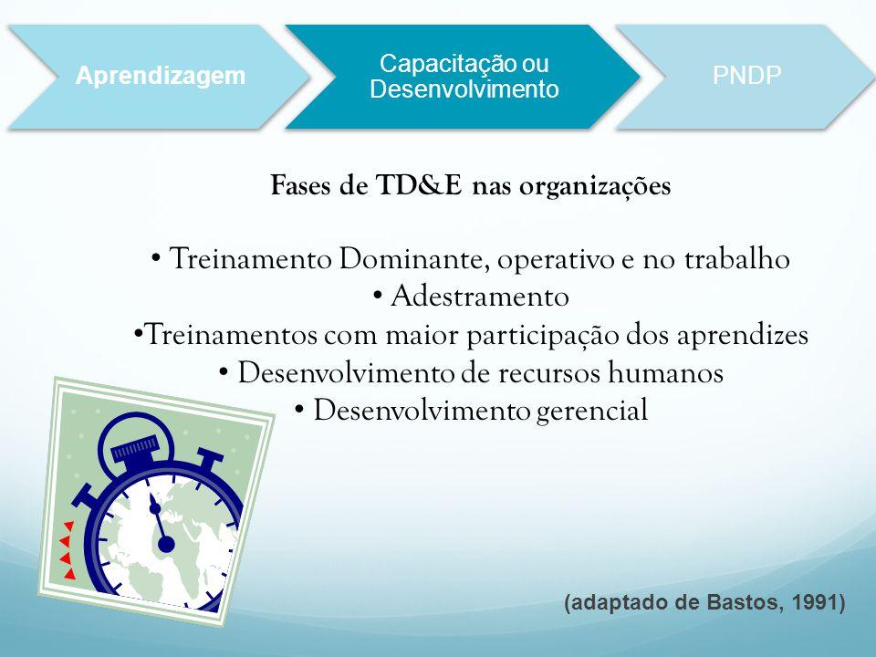 Fases de TD&E nas organizações Treinamento Dominante, operativo e no trabalho Adestramento Treinamentos com maior participação dos aprendizes Desenvol