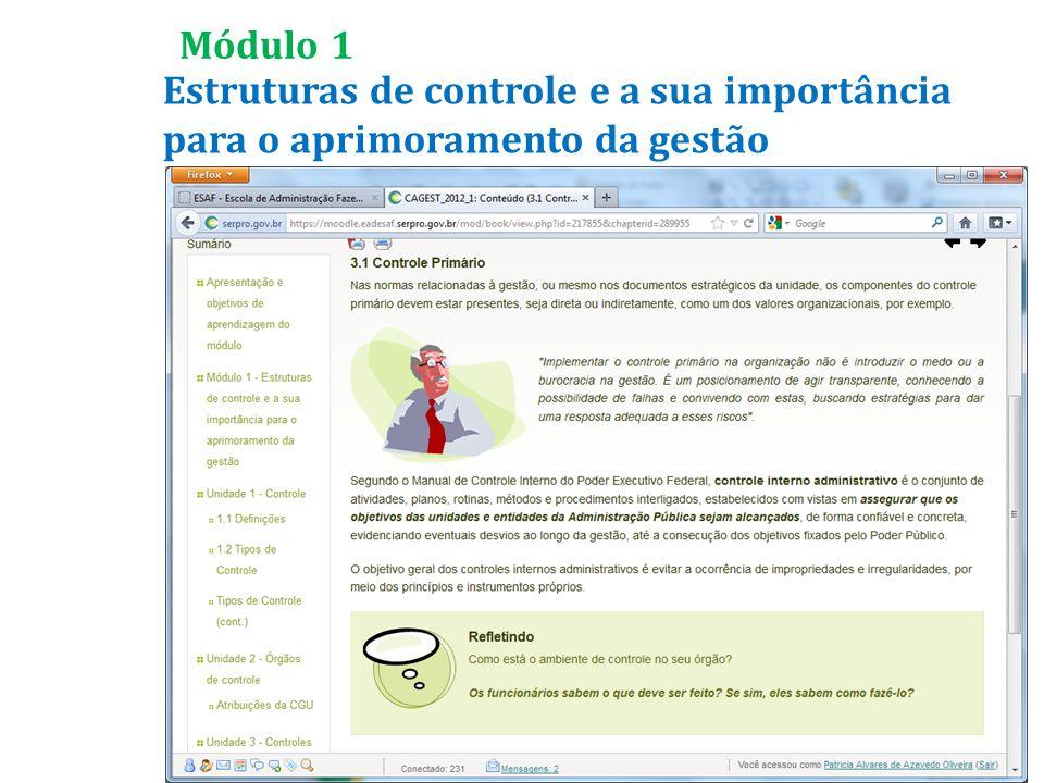 Estruturas de controle e a sua importância para o aprimoramento da gestão Módulo 1