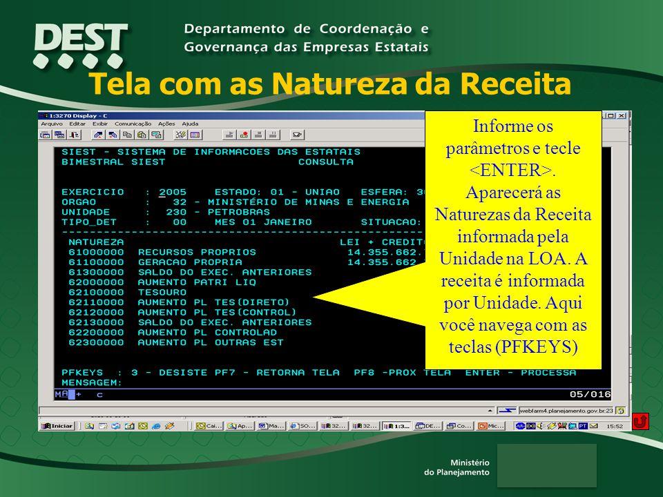 Tela com as Natureza da Receita Informe os parâmetros e tecle.
