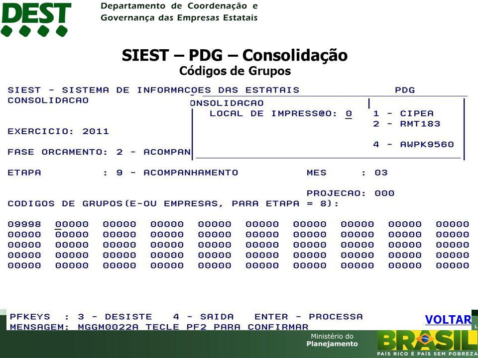 SIEST – PDG – Consolidação Códigos de Grupos VOLTAR