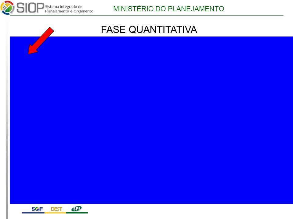 MINISTÉRIO DO PLANEJAMENTO FASE QUANTITATIVA