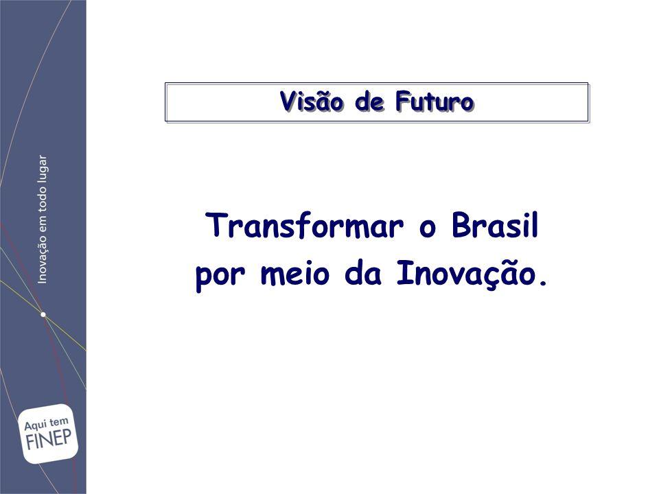 Promover o desenvolvimento econômico e social do Brasil por meio do fomento público à Ciência, Tecnologia e Inovação em empresas, universidades, institutos tecnológicos e outras instituições públicas ou privadas.