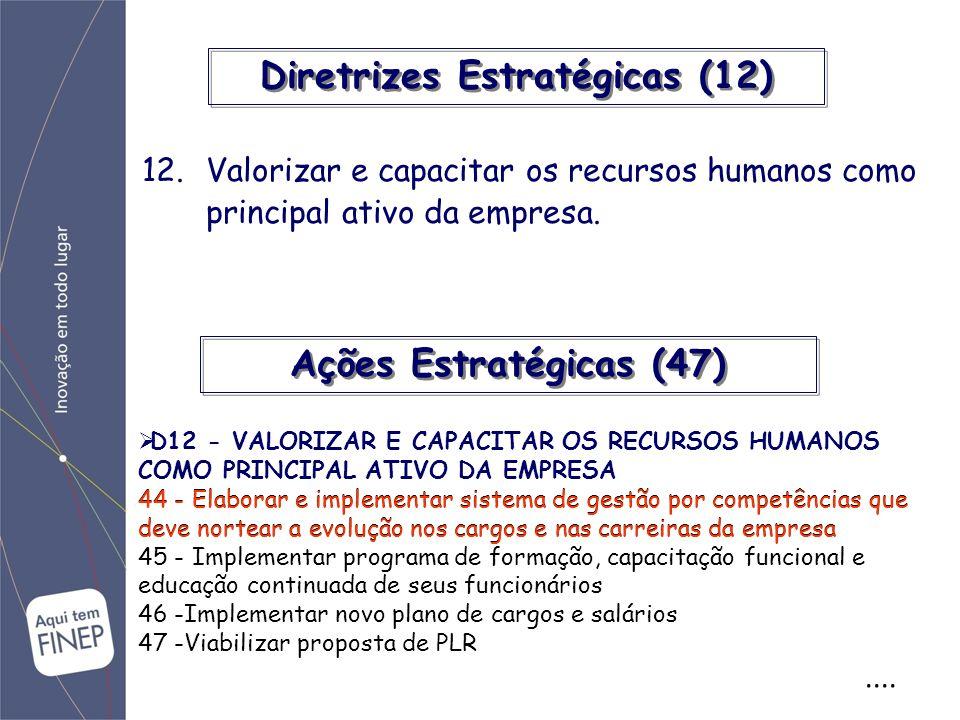 Diretrizes Estratégicas (12).... 12.Valorizar e capacitar os recursos humanos como principal ativo da empresa. D12 - VALORIZAR E CAPACITAR OS RECURSOS