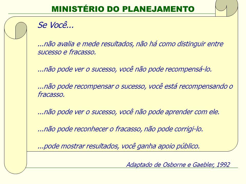 MINISTÉRIO DO PLANEJAMENTO Secretaria de Planejamento e Investimentos Estratégicos PPA 2008-2011 Avaliação 2009 (Ano Base 2008) Se Você......não avali