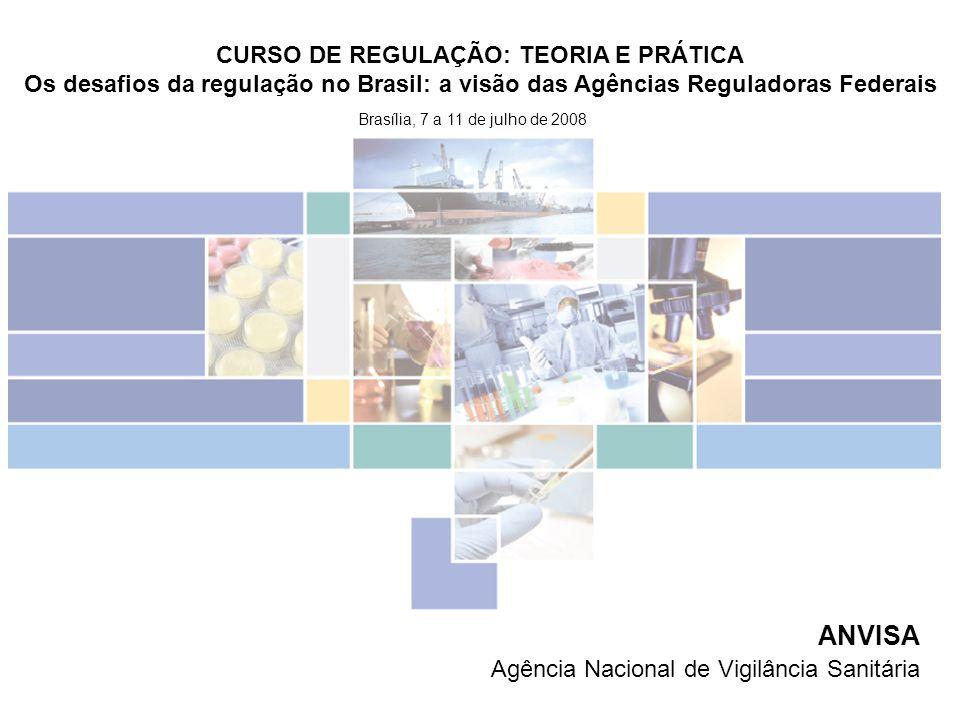 ANVISA Agência Nacional de Vigilância Sanitária Brasília, 7 a 11 de julho de 2008 CURSO DE REGULAÇÃO: TEORIA E PRÁTICA Os desafios da regulação no Bra
