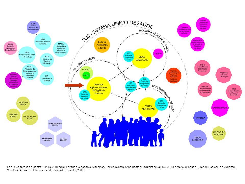 Agência Nacional de Vigilância Sanitária - ANVISA Estratégias: Uniformizar e sistematizar o processo de regulamentação (procedimentalização) Promover maior integração entre as diversas unidades organizacionais Implantar de forma coordenada rotina para análise de risco e análise do impacto regulatório e desenvolver metodologia apropriada para sua aplicação Aproximar os atores do Sistema Nacional de Vigilância Sanitária no processo de regulamentação Aprimorar os mecanismos e canais de participação (consulta e audiência pública) Orientar, conscientizar e capacitar profissionais Contribuir para a compilação e a consolidação dos atos normativos ANVISA Atuação institucional Programa de Melhoria do Processo de Regulamentação Portaria n.º 422, de 16 de abril de 2008