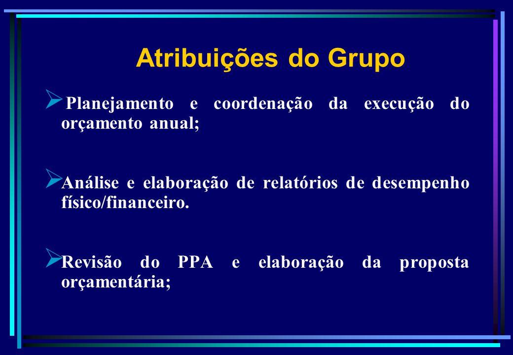 Planejamento e coordenação da execução do orçamento anual; Análise e elaboração de relatórios de desempenho físico/financeiro. Revisão do PPA e elabor