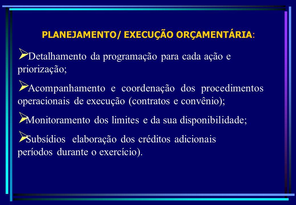 PLANEJAMENTO/ EXECUÇÃO ORÇAMENTÁRIA: Detalhamento da programação para cada ação e priorização; Acompanhamento e coordenação dos procedimentos operacio
