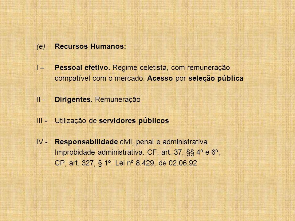 (e)Recursos Humanos: I – Pessoal efetivo.