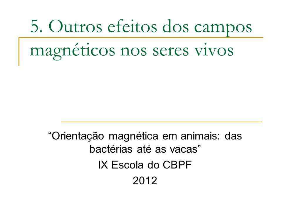 5. Outros efeitos dos campos magnéticos nos seres vivos Orientação magnética em animais: das bactérias até as vacas IX Escola do CBPF 2012