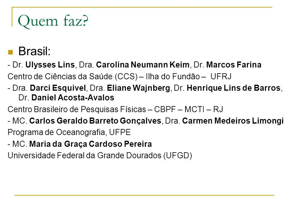 Quem faz? Brasil: - Dr. Ulysses Lins, Dra. Carolina Neumann Keim, Dr. Marcos Farina Centro de Ciências da Saúde (CCS) – Ilha do Fundão – UFRJ - Dra. D