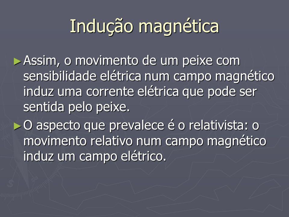 Indução magnética Assim, o movimento de um peixe com sensibilidade elétrica num campo magnético induz uma corrente elétrica que pode ser sentida pelo