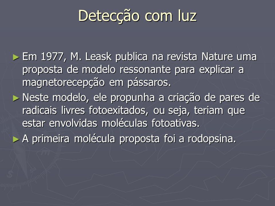 Detecção com luz Em 1977, M. Leask publica na revista Nature uma proposta de modelo ressonante para explicar a magnetorecepção em pássaros. Em 1977, M
