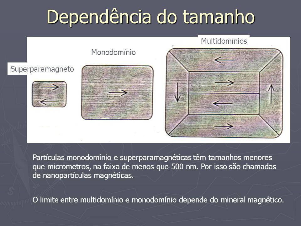 Dependência do tamanho Superparamagneto Monodomínio Multidomínios Partículas monodomínio e superparamagnéticas têm tamanhos menores que micrometros, na faixa de menos que 500 nm.
