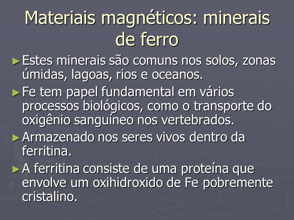Materiais magnéticos: minerais de ferro Estes minerais são comuns nos solos, zonas úmidas, lagoas, rios e oceanos. Estes minerais são comuns nos solos