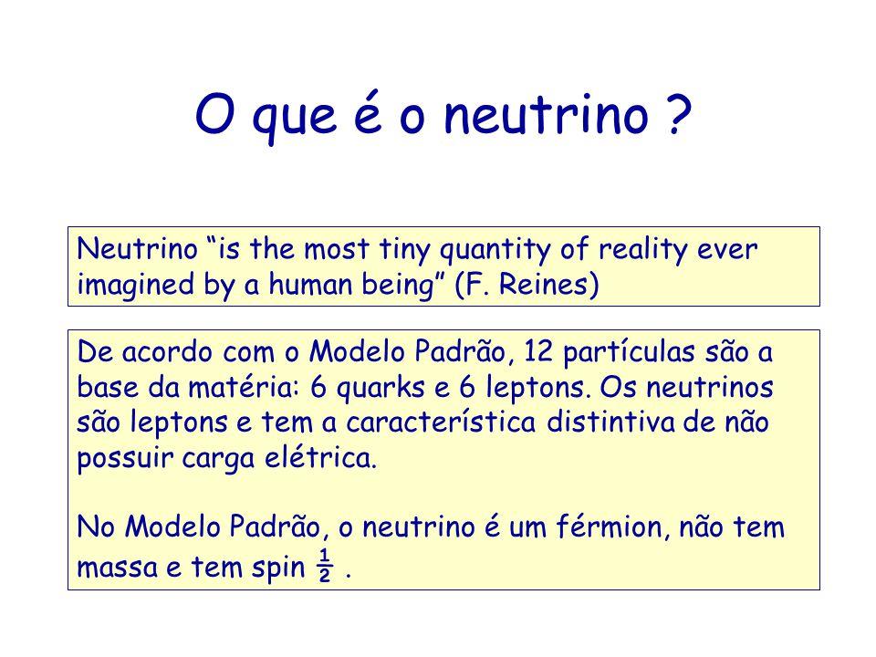 O que é o neutrino .
