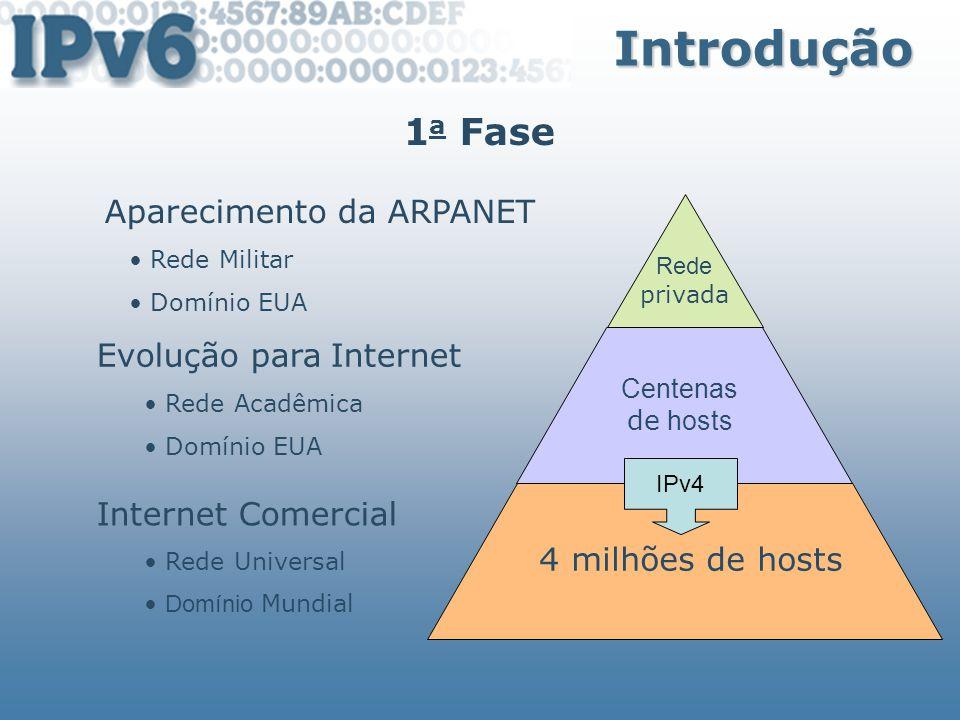 Introdução 1 a Fase 1991 - 1 a barreira de crescimento Crescimento exponencial da Internet Tamanho das tabelas de roteamento Exaustão dos endereços IPs até 1994 2 a Fase