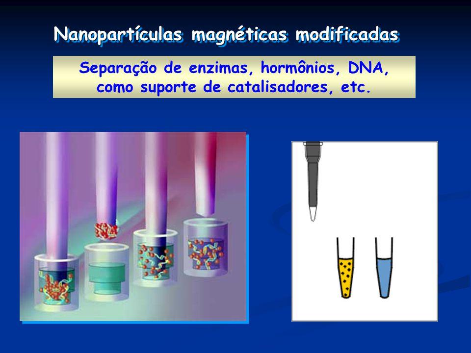 Separação de enzimas, hormônios, DNA, como suporte de catalisadores, etc.