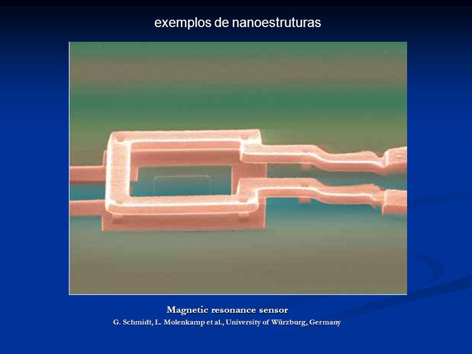 Magnetic resonance sensor G.Schmidt, L.