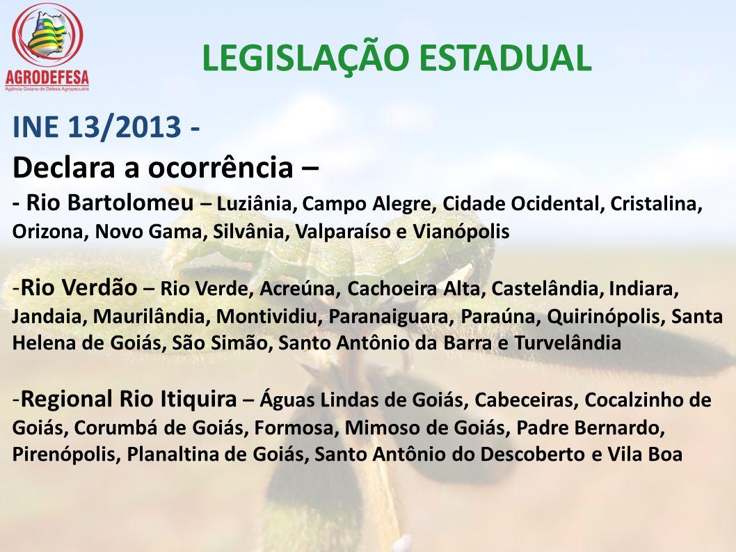 INE 13/2013 - Declara a ocorrência – - Rio Bartolomeu – Luziânia, Campo Alegre, Cidade Ocidental, Cristalina, Orizona, Novo Gama, Silvânia, Valparaíso
