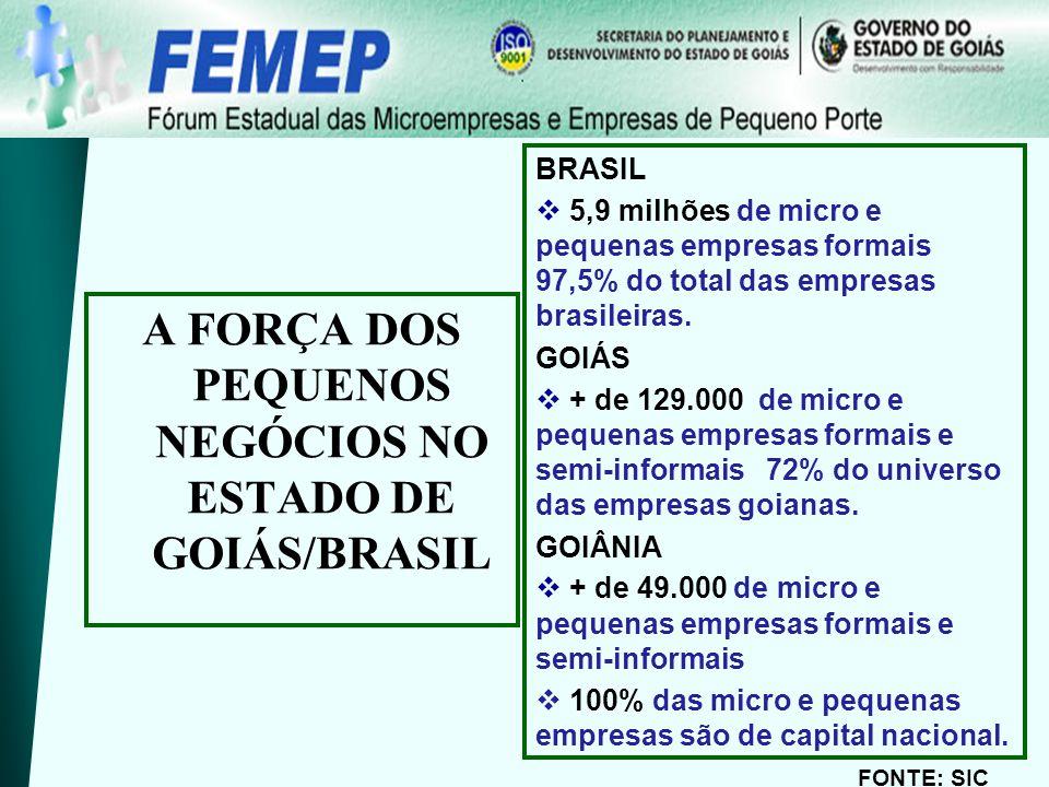 BRASIL 5,9 milhões de micro e pequenas empresas formais 97,5% do total das empresas brasileiras. GOIÁS + de 129.000 de micro e pequenas empresas forma
