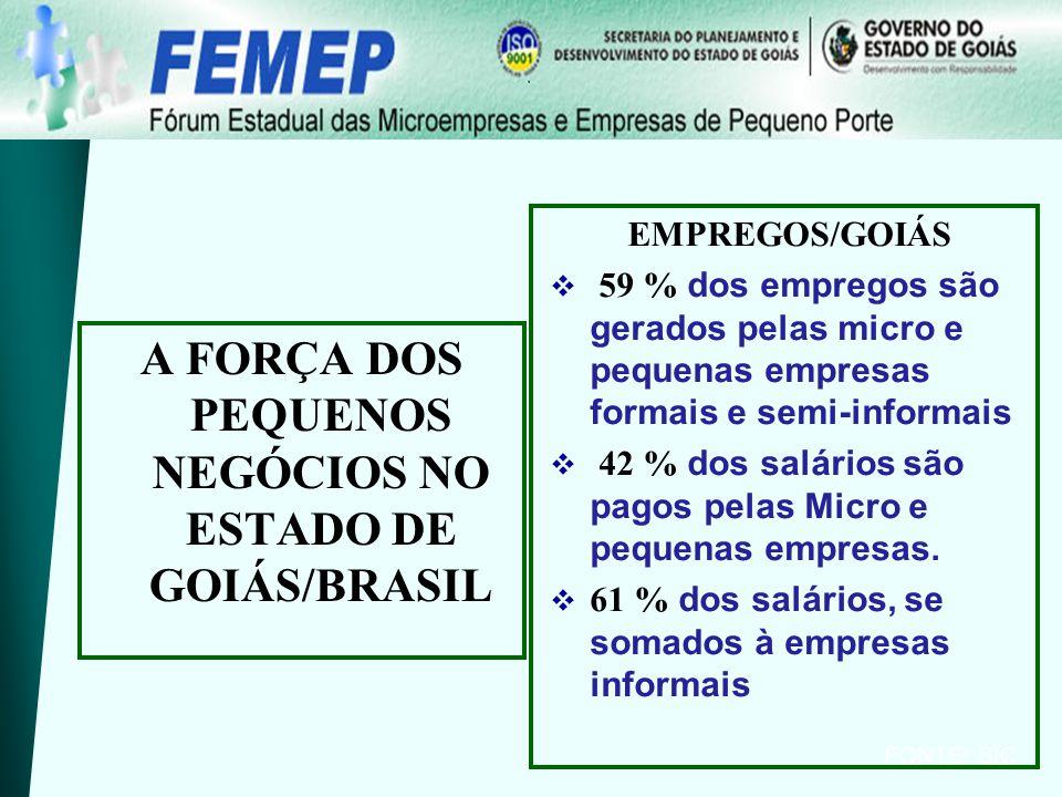 EMPREGOS/GOIÁS 59 % dos empregos são gerados pelas micro e pequenas empresas formais e semi-informais 42 % dos salários são pagos pelas Micro e pequen
