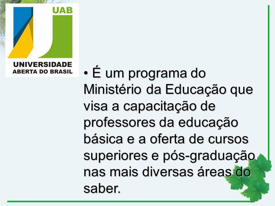 É um programa do Ministério da Educação que visa a capacitação de professores da educação básica e a oferta de cursos superiores e pós-graduação nas m