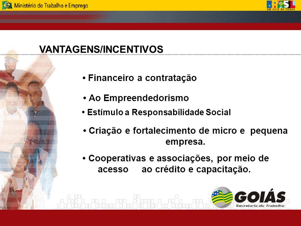 Cooperativas e associações, por meio de acesso ao crédito e capacitação.
