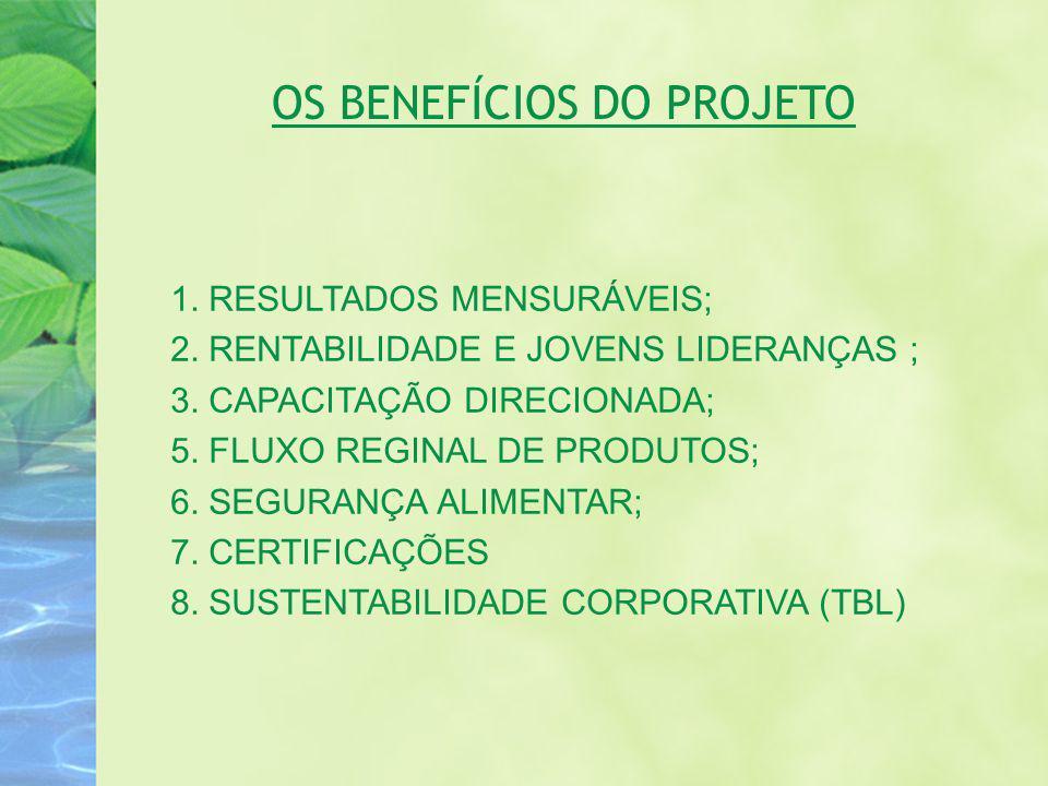 OS BENEFÍCIOS DO PROJETO 1. RESULTADOS MENSURÁVEIS; 2. RENTABILIDADE E JOVENS LIDERANÇAS ; 3. CAPACITAÇÃO DIRECIONADA; 5. FLUXO REGINAL DE PRODUTOS; 6