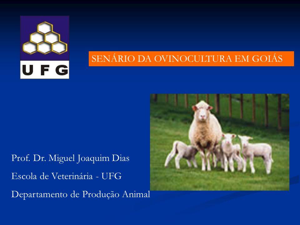 SENÁRIO DA OVINOCULTURA EM GOIÁS Prof. Dr. Miguel Joaquim Dias Escola de Veterinária - UFG Departamento de Produção Animal