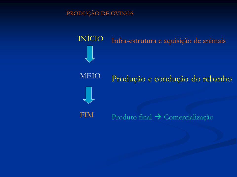 PRODUÇÃO DE OVINOS INÍCIO MEIO FIM Infra-estrutura e aquisição de animais Produção e condução do rebanho Produto final Comercialização