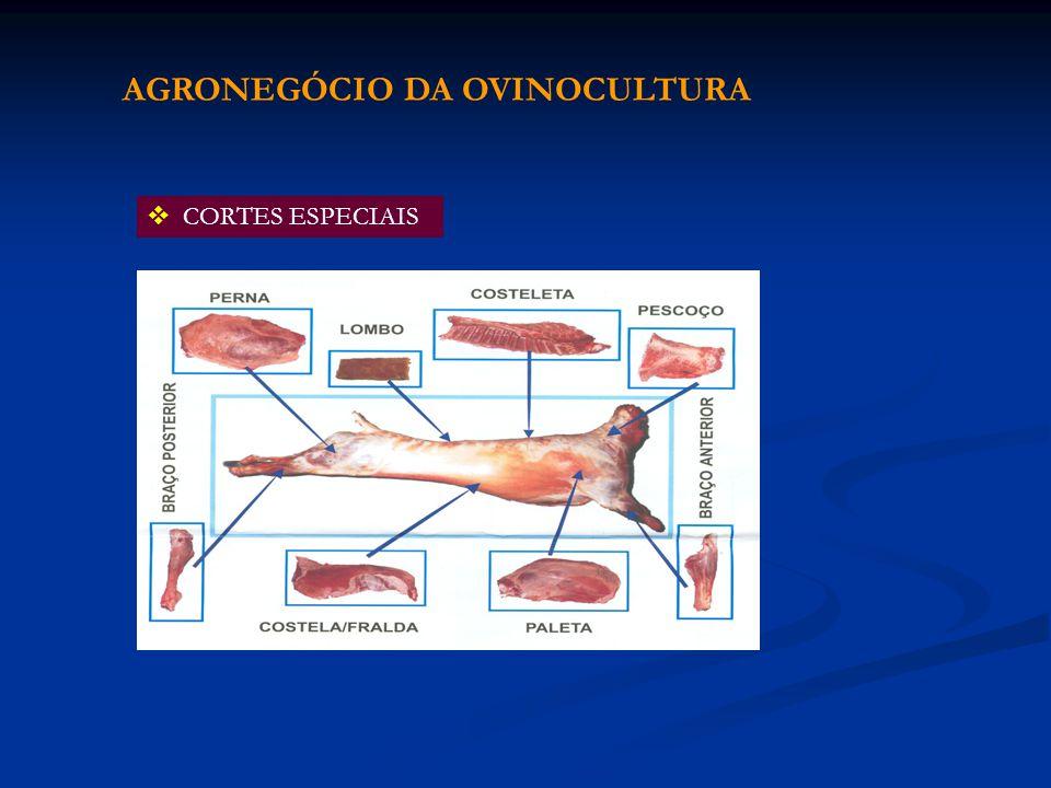 CORTES ESPECIAIS AGRONEGÓCIO DA OVINOCULTURA