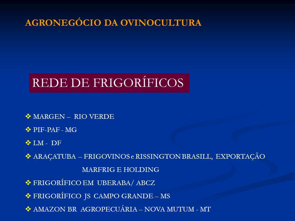 MARGEN – RIO VERDE PIF-PAF - MG LM - DF ARAÇATUBA – FRIGOVINOS e RISSINGTON BRASILL, EXPORTAÇÃO MARFRIG E HOLDING FRIGORÍFICO EM UBERABA/ ABCZ FRIGORÍ