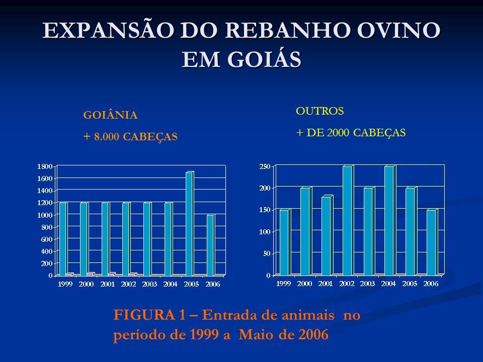 EXPANSÃO DO REBANHO OVINO EM GOIÁS FIGURA 1 – Entrada de animais no período de 1999 a Maio de 2006 GOIÂNIA + 8.000 CABEÇAS OUTROS + DE 2000 CABEÇAS