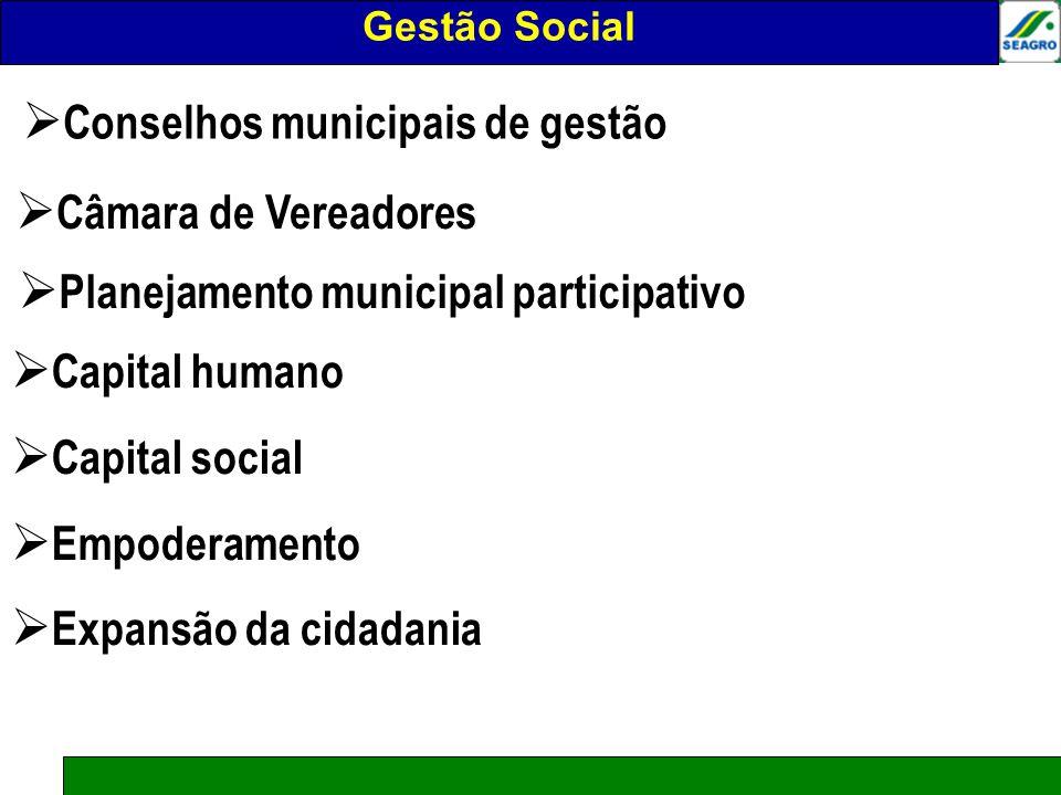 Gestão social Conselhos municipais de gestão Câmara de Vereadores Planejamento municipal participativo Capital humano Capital social Empoderamento Exp