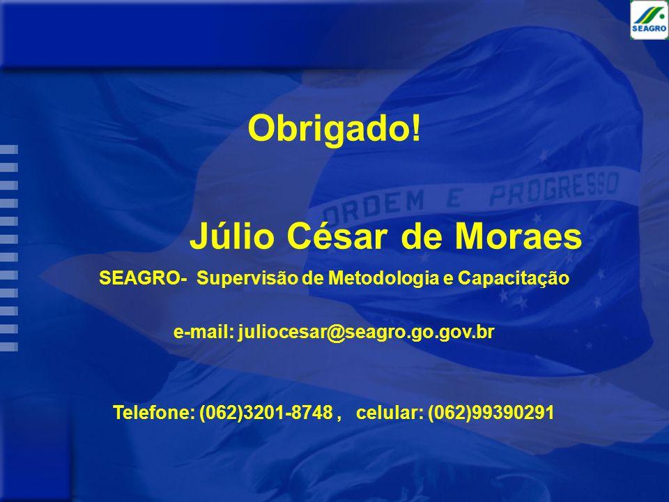 Obrigado! Júlio César de Moraes SEAGRO- Supervisão de Metodologia e Capacitação e-mail: juliocesar@seagro.go.gov.br Telefone: (062)3201-8748, celular: