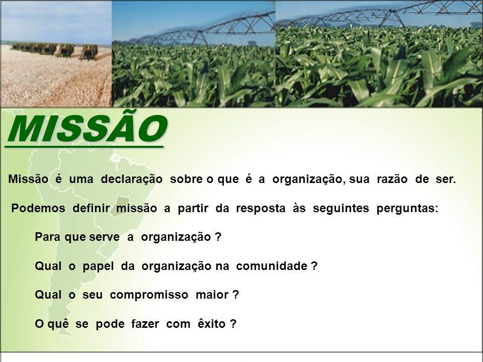 MISSÃO A Missão é uma declaração sobre o que é a organização, sua razão de ser. P Podemos definir missão a partir da resposta às seguintes perguntas: