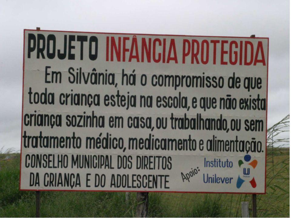 O papel dos Conselhos de Gestão no planejamento e desenvolvimento municipal Júlio César de Moraes