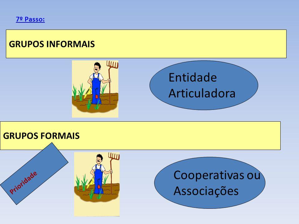 GRUPOS INFORMAIS GRUPOS FORMAIS 7º Passo: Entidade Articuladora Cooperativas ou Associações Prioridade