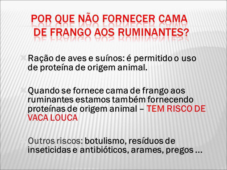 Ração de aves e suínos: é permitido o uso de proteína de origem animal. Quando se fornece cama de frango aos ruminantes estamos também fornecendo prot