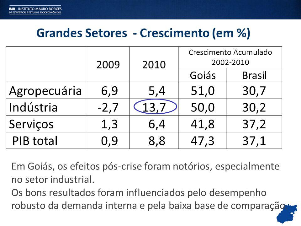 Grandes Setores - Crescimento (em %) 20092010 Crescimento Acumulado 2002-2010 GoiásBrasil Agropecuária 6,9 5,451,030,7 Indústria-2,713,750,030,2 Servi