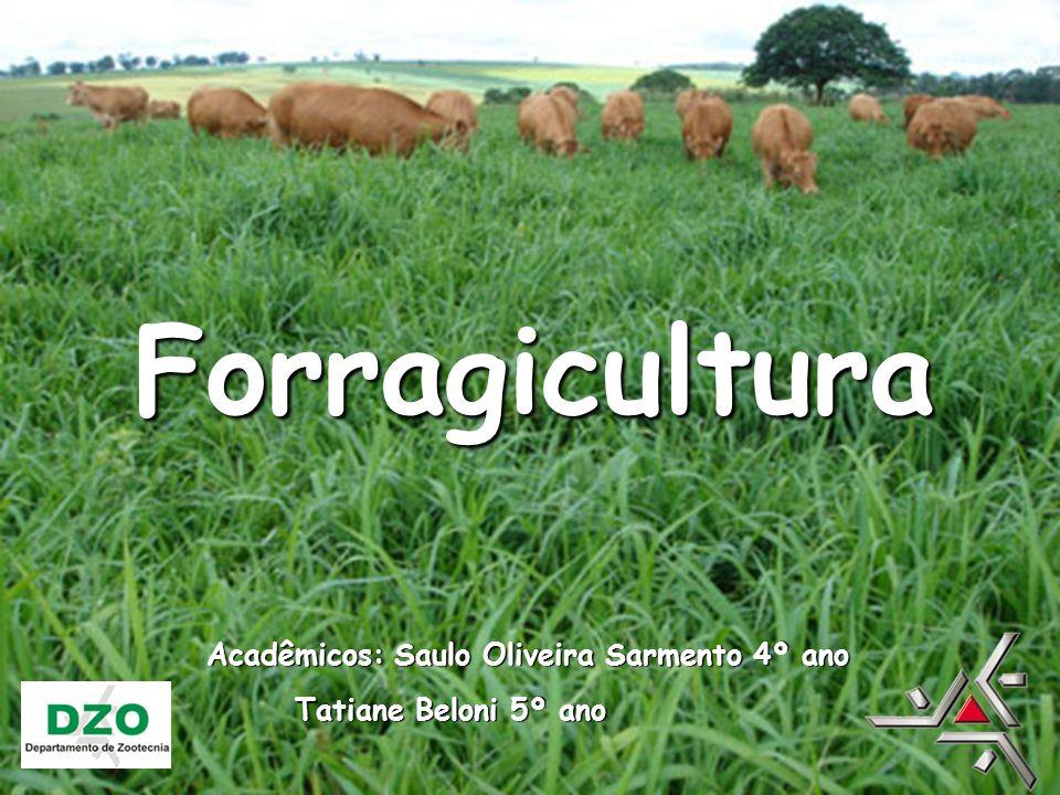 Estudo das plantas forrageiras Forragem é todo alimento consumido pelo animal (gramíneas e leguminosas) Pastagens e/ou conservados (feno e silagem) Forragicultura