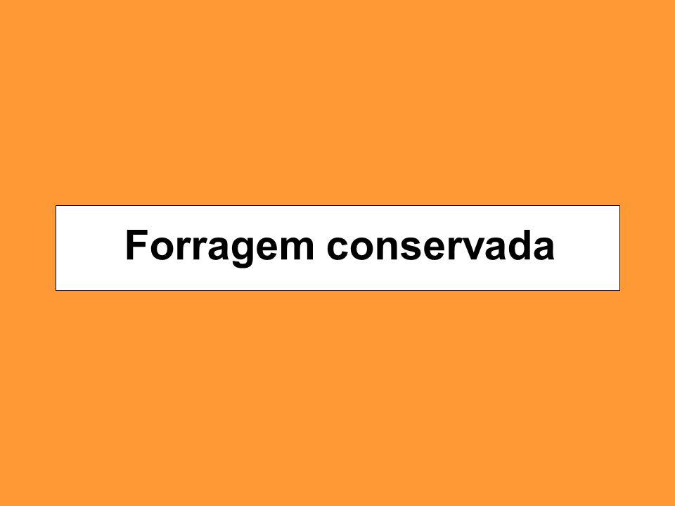 Forragem conservada