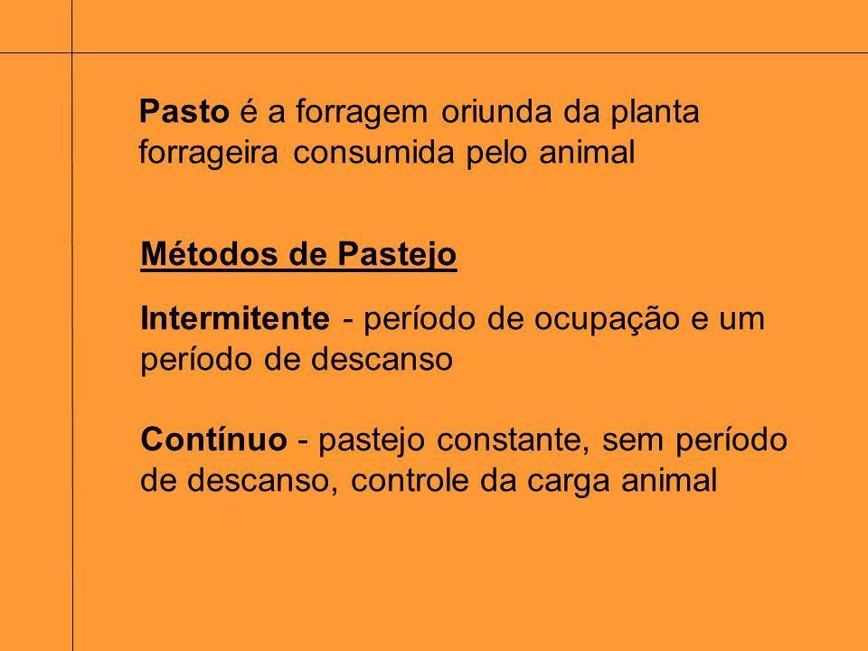 Pasto é a forragem oriunda da planta forrageira consumida pelo animal Métodos de Pastejo Intermitente - período de ocupação e um período de descanso C