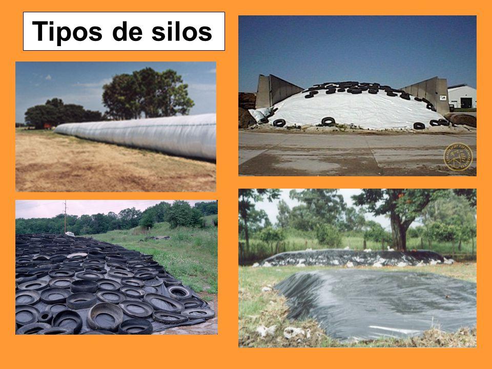 Tipos de silos