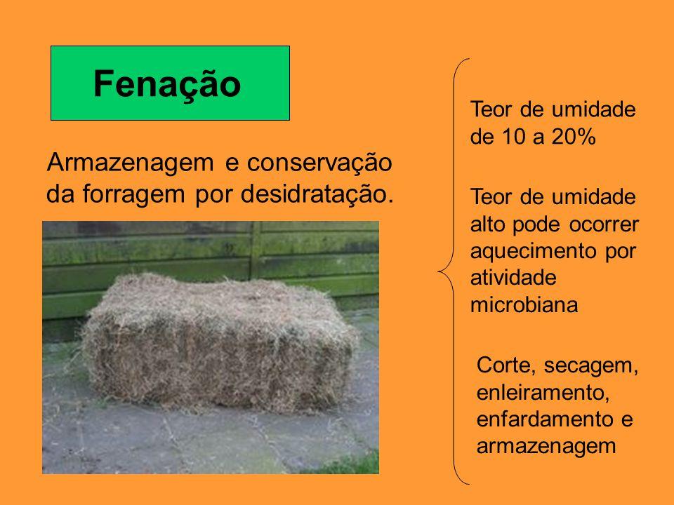 Fenação Armazenagem e conservação da forragem por desidratação. Teor de umidade de 10 a 20% Teor de umidade alto pode ocorrer aquecimento por atividad